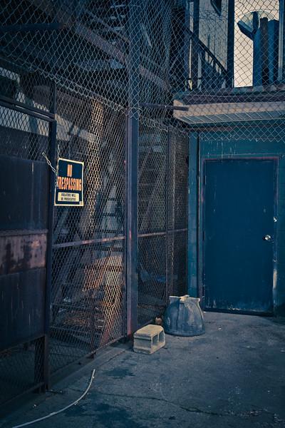 alley in royal oak-1.jpg