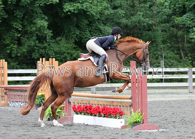 Sussex County Benefit Show July 3, 2013