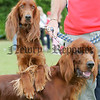 Beni and Alex Paws for thought at the pet show during the Markethill festival. 06W32N20