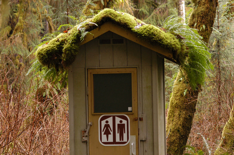My favorite outhouse!