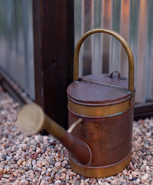 NGingold_050113DigLanscape_244.jpg