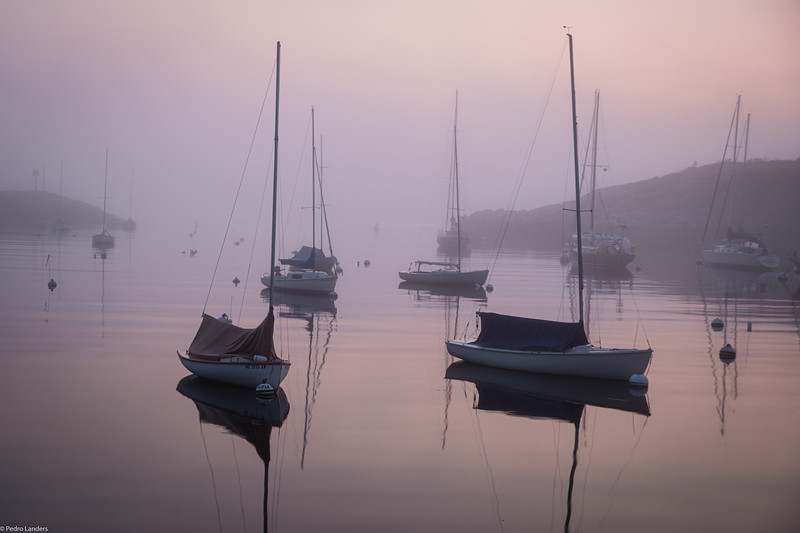 Rockport in the Morning Fog