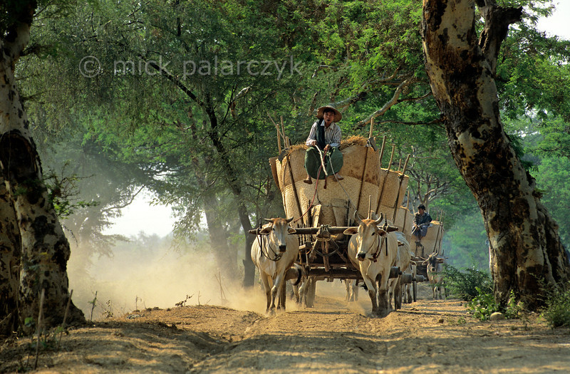[BURMA 24.996]