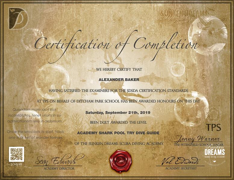 SDSDA-Certificate-Try-Dive-Shark-Pool-Alexander-Baker.jpg