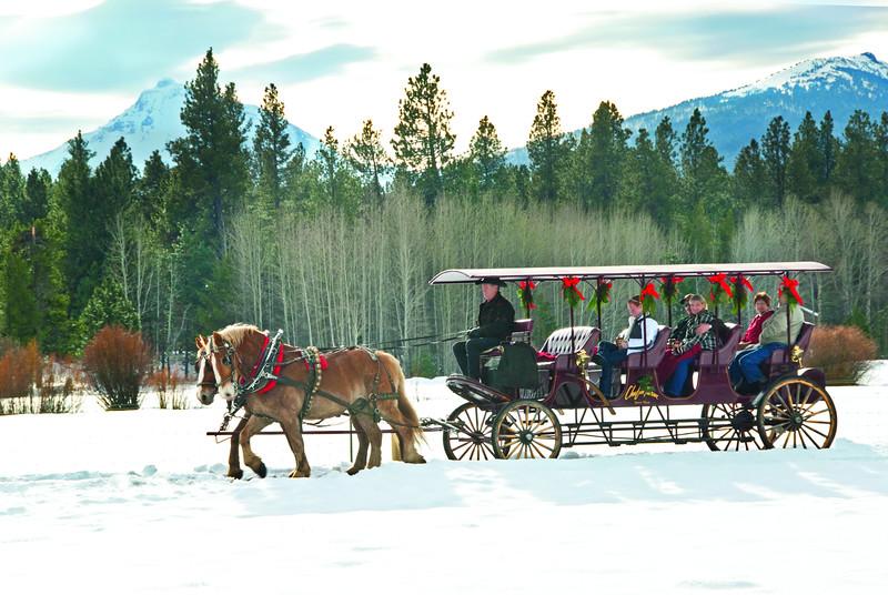 BBR-Holiday-Carriage-Rides-KateThomasKeown_DSC7853cmyk.jpg