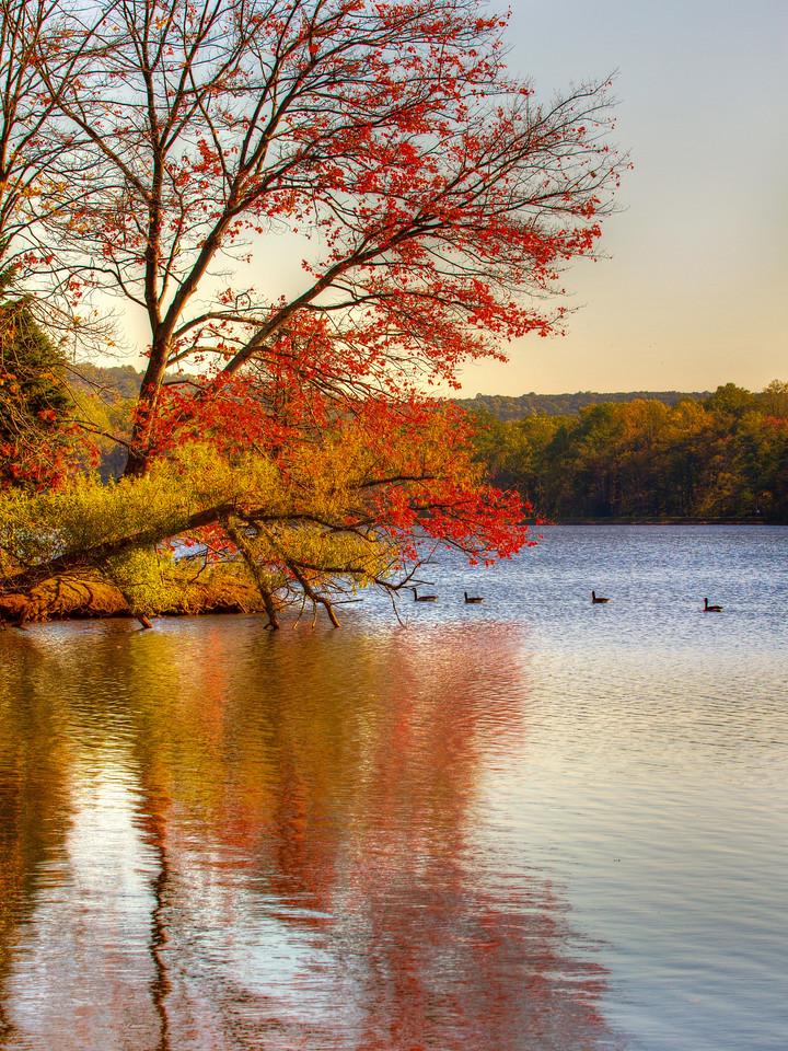 宾州 French Creek State Park,秋季畅想