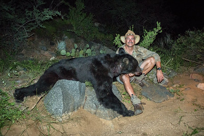 Arizona Bear Hunt