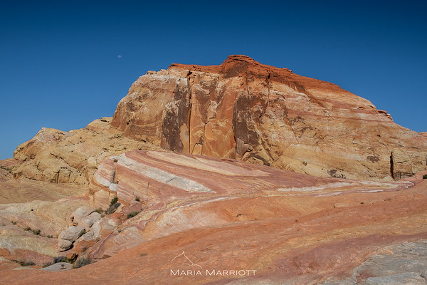 Red Rock Canyon | Valley of Fire | Coral Pink Sand Dunes | Snow Canyon ... Parks
