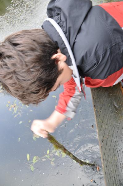 2010/11 - Salmon Spawning Hike & Go Carts