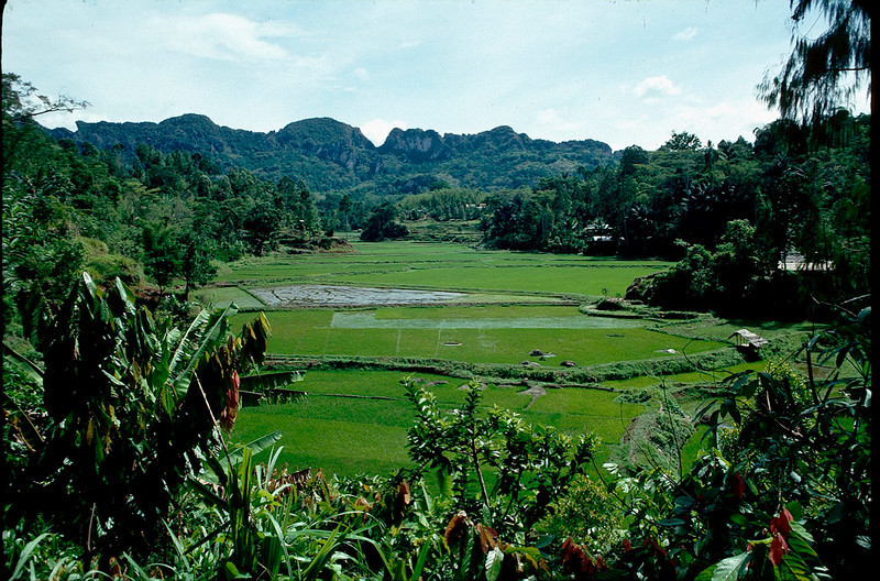 Indonesia1_097.jpg