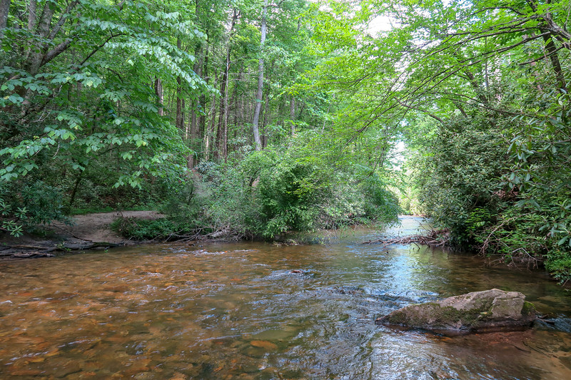 South Fork Mills River (Crossing #1) -- 2,290'