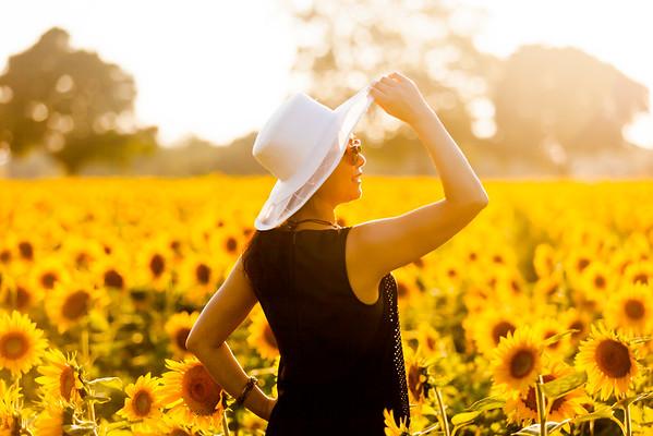 Lui Hui Sun flower