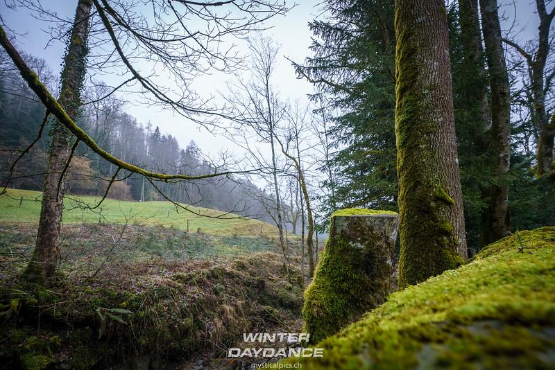 Winterdaydance2018_116.jpg