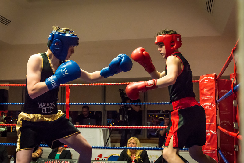 -Boxing Event March 5 2016Boxing Event March 5 2016-16890689.jpg
