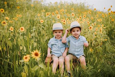 July 2019   Sunflower Mini