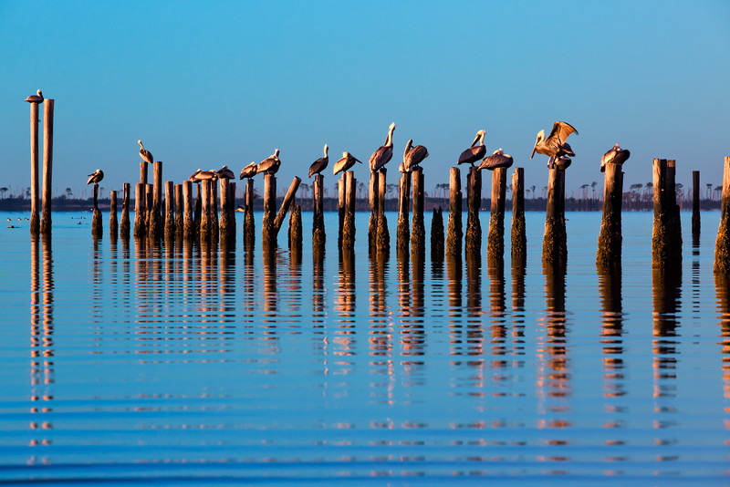 Ocean Springs Front Beach January-648-Edit.jpg