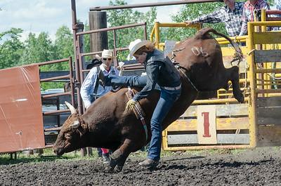 Bulls Saturday 2014