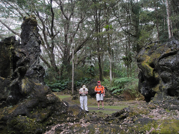 Big Island Robertsons Lava Cast Forest