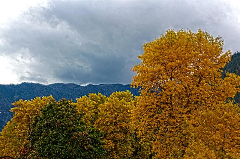 Fall_Colors_HDR5.jpg