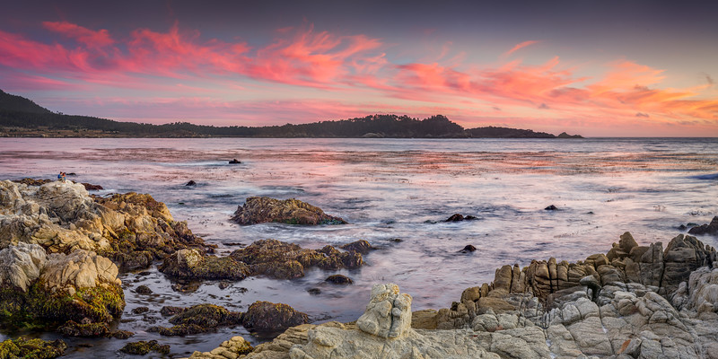Point Lobos Pink and Blue
