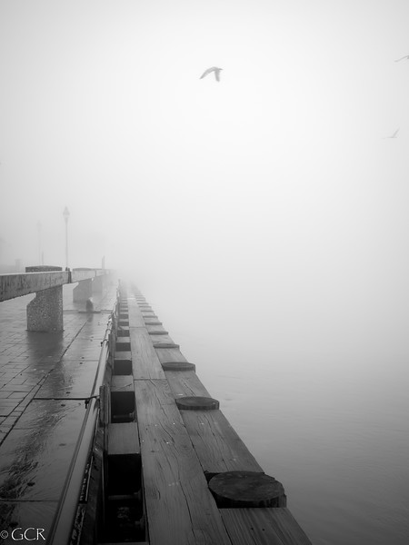 Morning at Riverfront B&W (1 of 1).jpg
