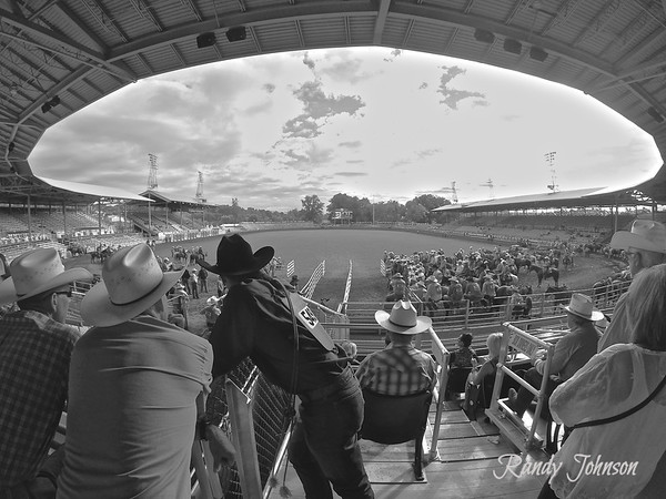 Pendleton Round-Up 2014 Black  & White