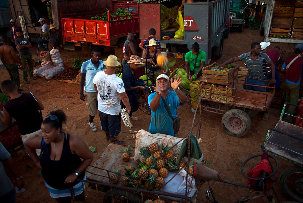. In thus Wednesday, Sept. 25, 2013, a vendor reaches out to catch a pineapple at a food market where he purchases the fruit to then resell on the streets, on the outskirts in Havana, Cuba. Cuban authorities on Thursday announced 18 new categories of independent employment that will be permitted under President Raul Castro\'s economic reforms, and also restrictions intended to regulate other private entrepreneurs already in business. (AP Photo/Ramon Espinosa)