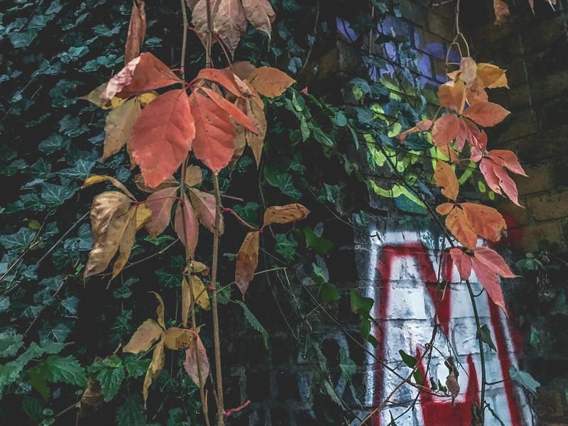 Berlin1Yearand3Months-196.jpg
