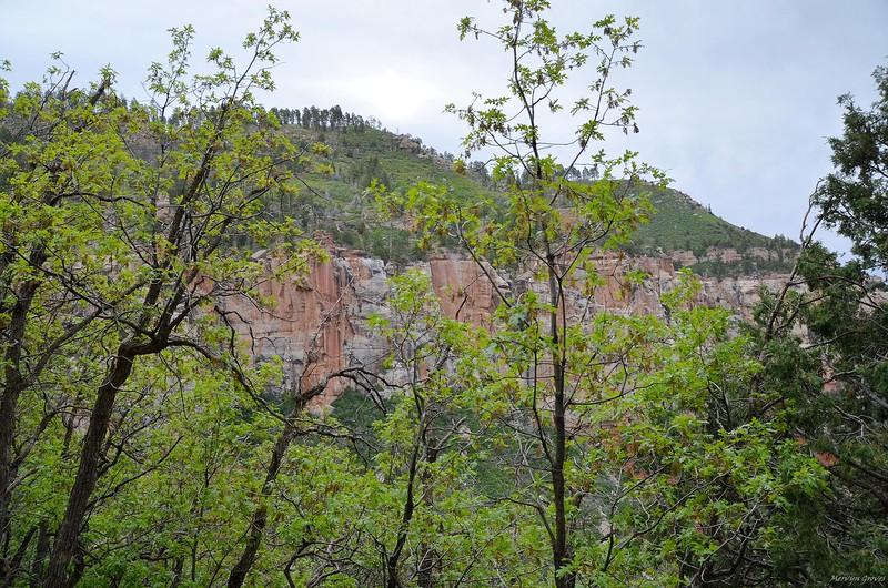 grand_canyon2_2014_008.jpg