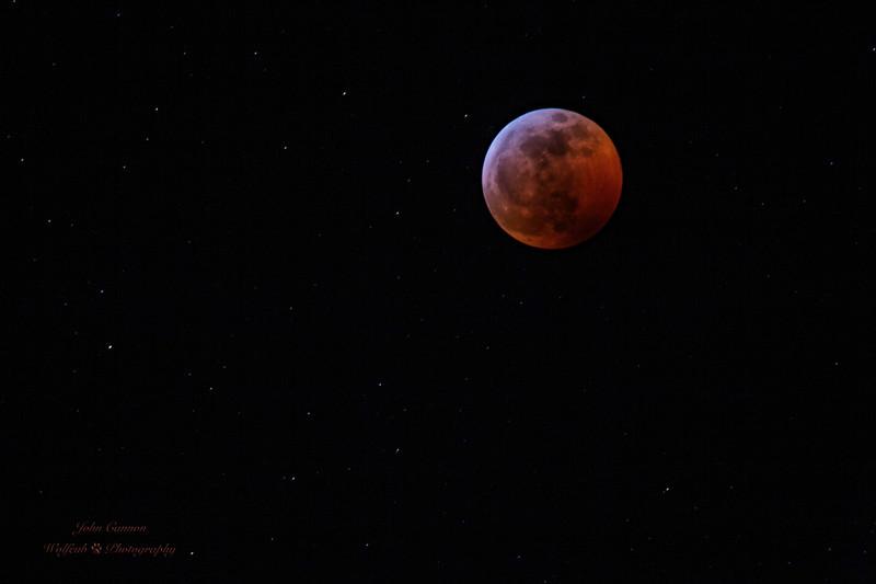 Lunar2019-47.jpg