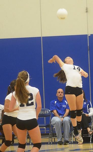 2014 Times Herald Volleyball Season