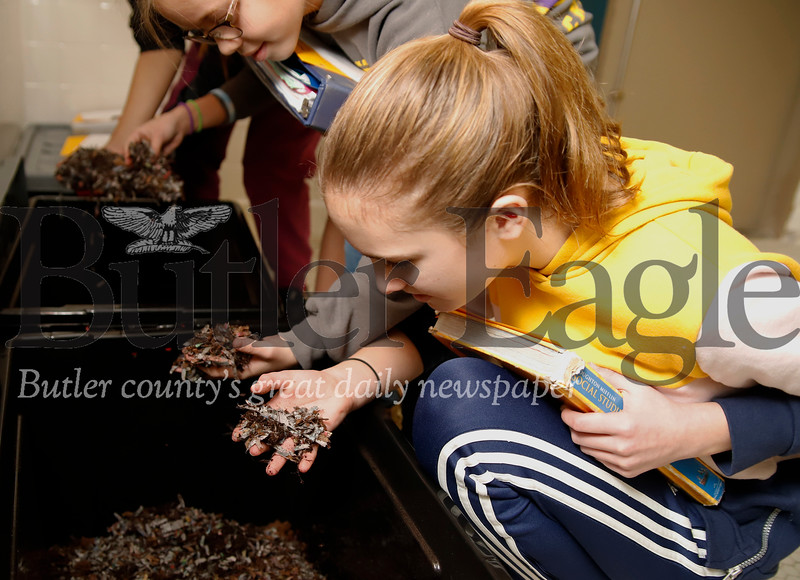 Macie McLister inspects composting worms in Butler Middle School's Fisheries Program Nursery. Seb Foltz/Butler Eagle