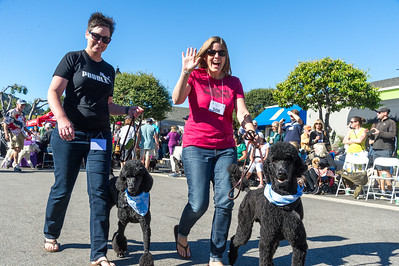 Poodle Day 2016