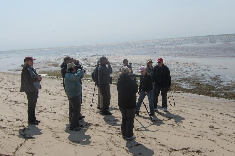 The group at Bay Shore