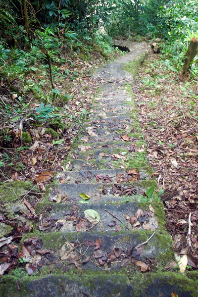 Stairs to Old Port #2, Rennell Island - Solomon Islands