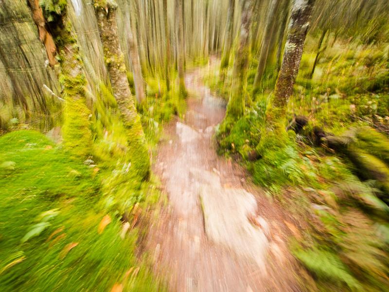 Course en sentier - Mont Mégantic