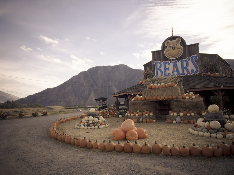bears fruit stand.jpg