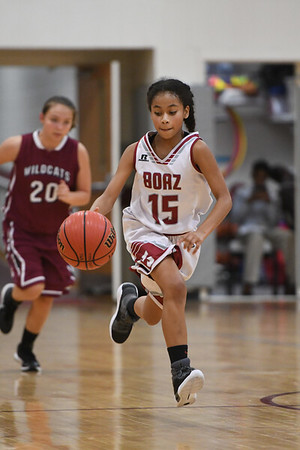 BMS Basketball 2017-18