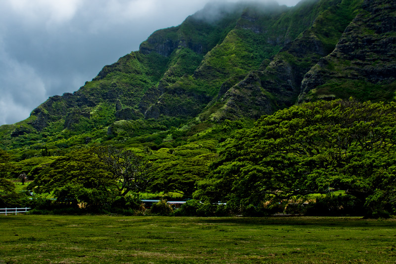 Journey into Oahu Photograph 62