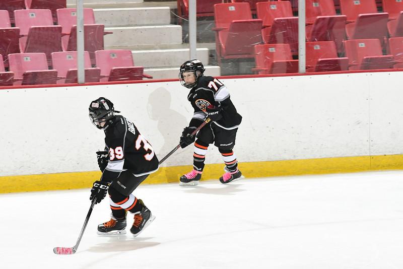Orda-CANAM-CANAM Hockey 1980 Rink-id224952103.jpg