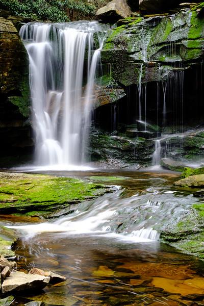 20180504-05 Blackwater Falls State Park 007.jpg
