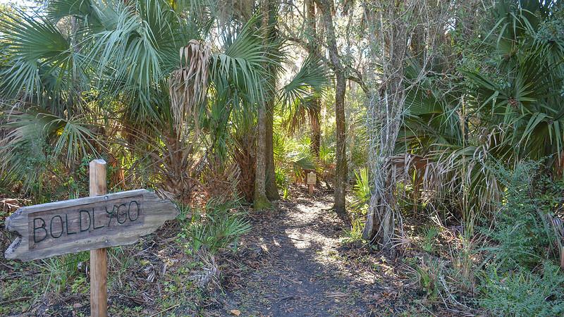 Boldly Go Trail Carlton Reserve