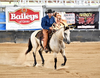 OPEN BRIDLE SPECTACULAR REINING