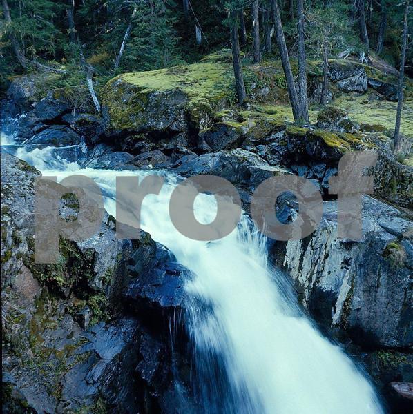 Ohanapagosh Falls in Mount Rainier National Park.