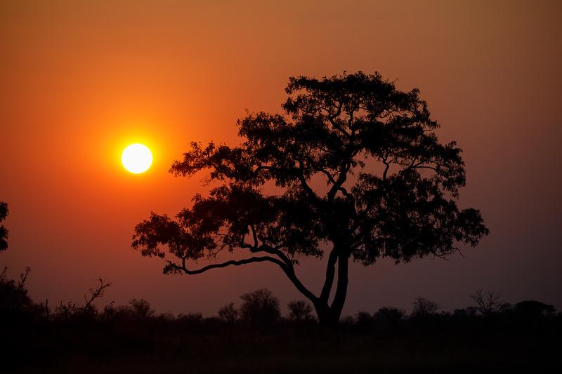 Botswana_0818_PSokol-608.jpg