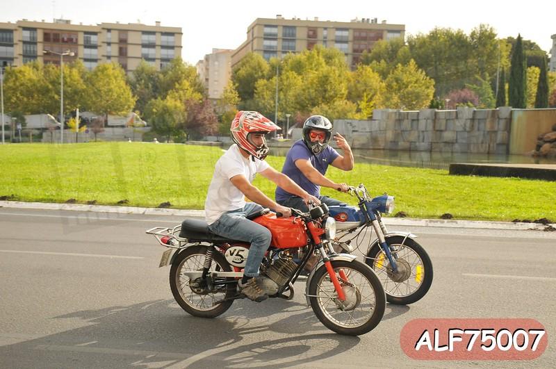 ALF75007.jpg