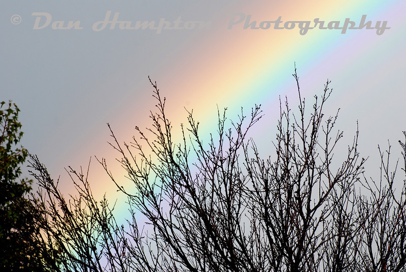 Rainbow_18.jpg