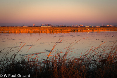 Yolo Bypass at Sunset