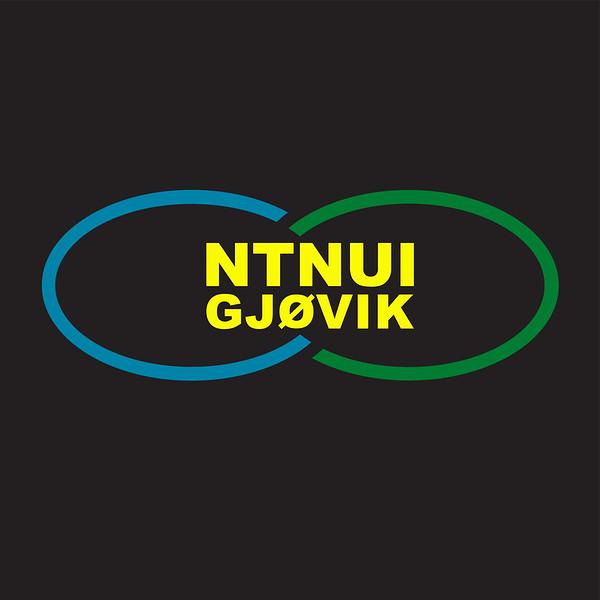 ntnui_gjovik