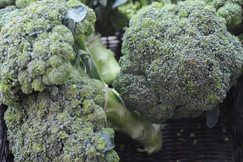 FarmersMarket_20080703_022.JPG